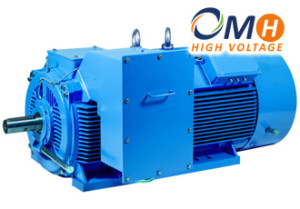 Electric-motors-OMH-HV
