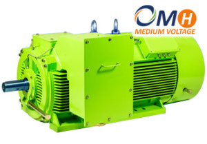 Electric-motors-OMH-MV