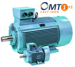 Electric-motors-OMT1-IE1
